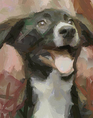House Pet Digital Art - Joyee Doggy by Yury Malkov