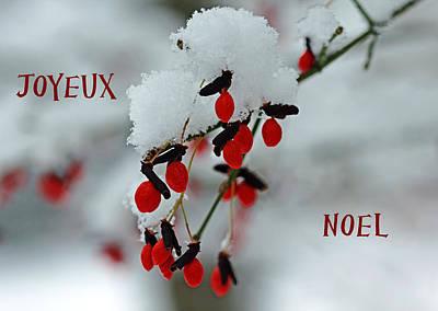 Photograph - Joyeux Noel by Debbie Oppermann
