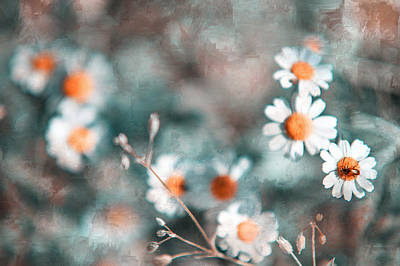 Floral Composition Photograph - Joyful Friends. Nature In Alien Skin by Jenny Rainbow