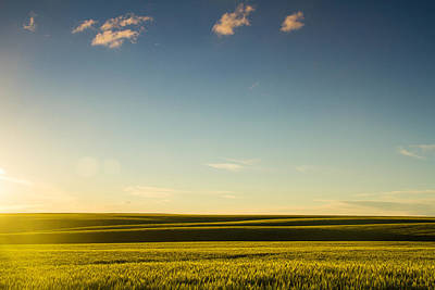 Photograph - Joys Of A Spring Sunset by Kunal Mehra