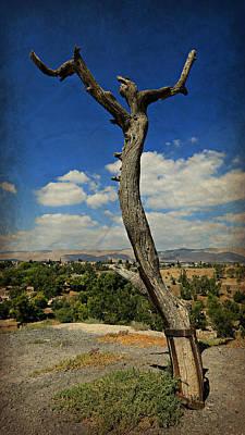 Judas Tree -- Jesus Christ Superstar  Art Print by Stephen Stookey