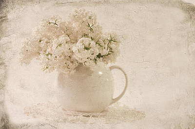 Jug Of White Lilacs Art Print by Sandra Foster