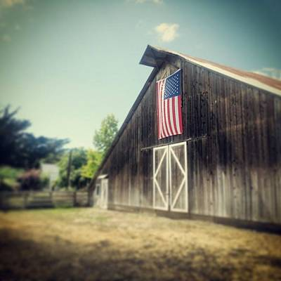 July Barn Art Print by Melissa Broughton