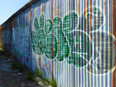Photograph - July Graffiti 8 by Laurie Tsemak