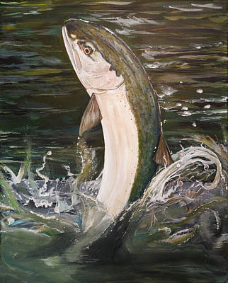 Painting - Jumping Steelhead by Sara Stevenson