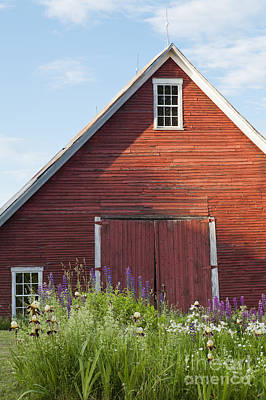 Photograph - June Barn by Alan L Graham