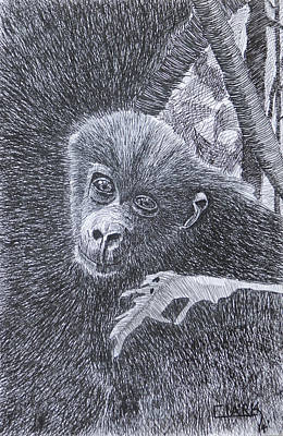 Drawing - Jungle Baby by Wade Clark