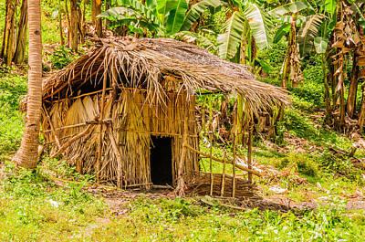 Jungle Hut In A Tropical Rainforest Art Print by Colin Utz