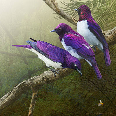 Starlings Digital Art - Jungle Mist -amethyst Starlings   by R christopher Vest