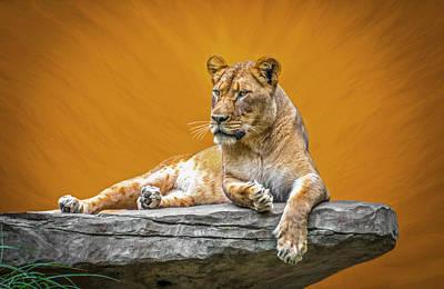 Jungle Queen Art Print by Marion Johnson