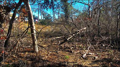 Photograph - Junglescape1 2009 by Glenn Bautista