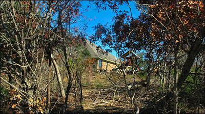 Photograph - Junglescape3 2009 by Glenn Bautista