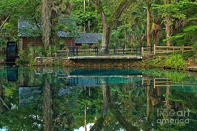 Old Mills Photograph - Juniper Springs Florida by Adam Jewell