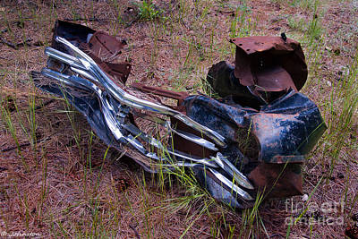 Photograph - Junk Art #1 National Forest by Bob and Nadine Johnston