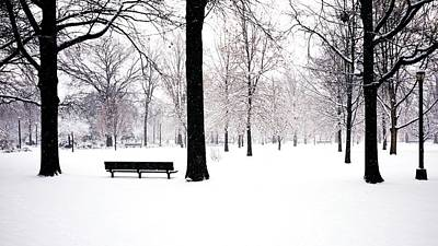 Jupiter Park In Snow Art Print