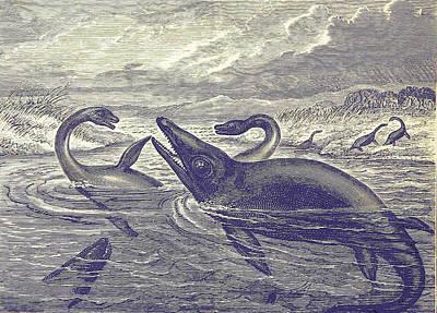 Photograph - Jurassic Plesiosaurus And Ichthyosaurus by British Library