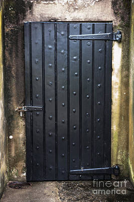 Photograph - Just A Door by Dale Powell