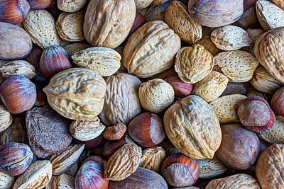 Fine Art Choices Photograph - Just A Little Nutty by Heidi Smith