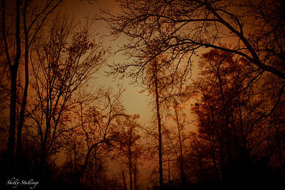 Art Print featuring the photograph Just After Sunset by Shelly Stallings