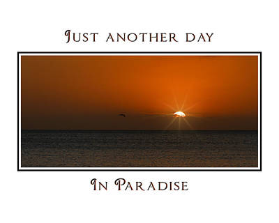 Photograph - Just Another Day by J Michael Nettik