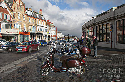Colourfull Photograph - Just Arrived by David  Hollingworth