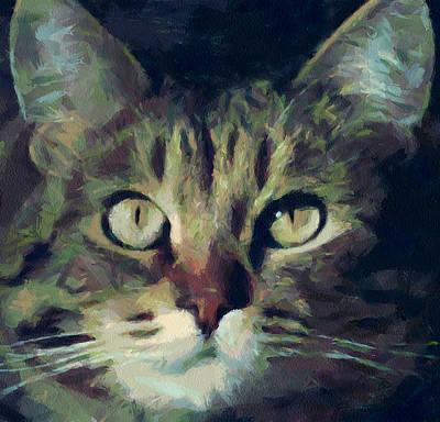 House Pet Digital Art - Just Be Careful by Yury Malkov