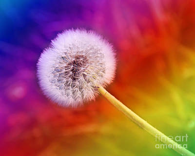 Dandelion Digital Art - Just Dandy Rainbow by Andee Design