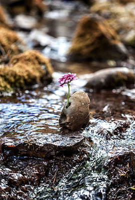 Adversity Photograph - Just Let Your Love Flow by Aaron Aldrich