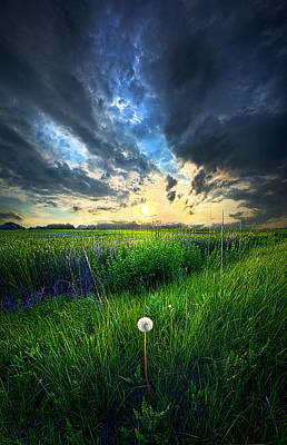 Just One Art Print by Phil Koch
