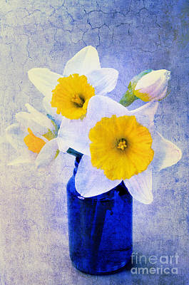 Flowers In Vase Mixed Media - Just Plain Daffy 2 In Blue - Flora - Spring - Daffodil - Narcissus - Jonquil  by Andee Design