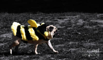 Bumble Digital Art - Just Pugging Along At The Speed Of Halloween  by Steven Digman