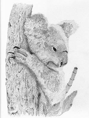 Koala Drawing - Just Relaxed by Wendy Brunell