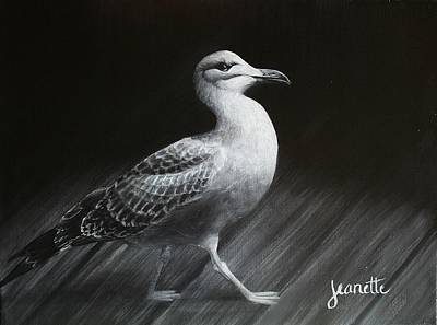 Painting - Juvenile Gull by Jeanette Fellows