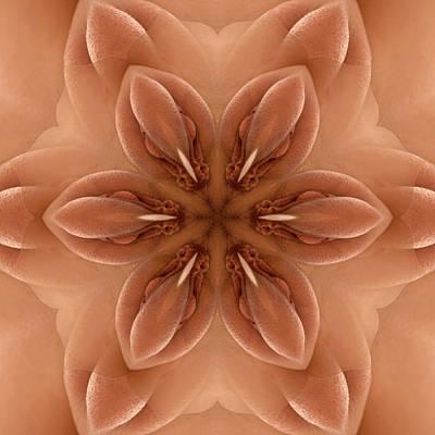 Photograph - K7701c Sexual Mandala For Erotic Spirituality by Chris Maher