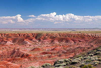 Photograph - Kachina Point Painted Desert Petrified Forest National Park by Fred Stearns