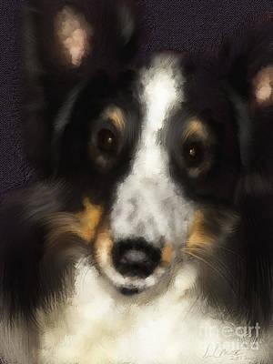 Shetland Sheepdog Digital Art - Kaci by Jon Munson II