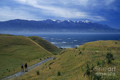 Photograph - Kaikoura Coastline New Zealand by Craig Lovell