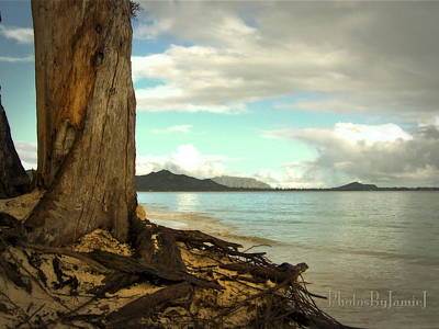 Photograph - Kailua Beach by Jamie Johnson