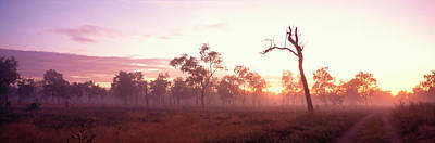 Sillouette Photograph - Kakadu National Park Northern Territory by Panoramic Images