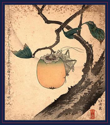 Grasshopper Drawing - Kaki Ni Kirigirisu by Hokusai, Katsushika (1760-1849), Japanese