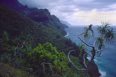 Photograph - Kalalau Beginnings by Morris  McClung