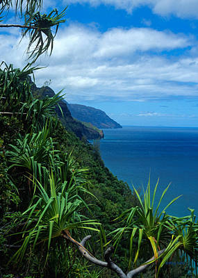 Kalalau Trail Kauai Art Print by Kathy Yates