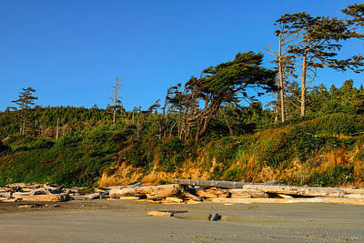 Photograph - Kalaloch Beach by Greg Norrell
