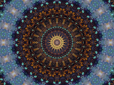 Mandala Photograph - Kaleidoscope 1 by Tom Druin