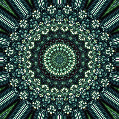 Kaleidoscope 10 Art Print by Tom Druin