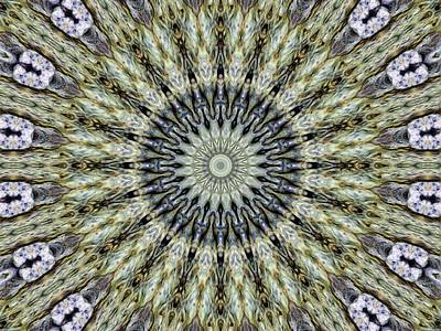 Mandala Photograph - Kaleidoscope 6 by Tom Druin