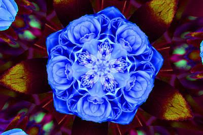 Camellias Photograph - Kaleidoscope Blue Camellia by Mechala  Matthews