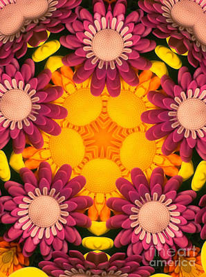 Kaleidoscope Daisies Art Print by Amy Cicconi