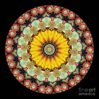 Kaleidoscope Ernst Haeckl Sea Life Series Art Print by Amy Cicconi