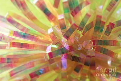 Photograph - Kaleidoscope by Jean OKeeffe Macro Abundance Art